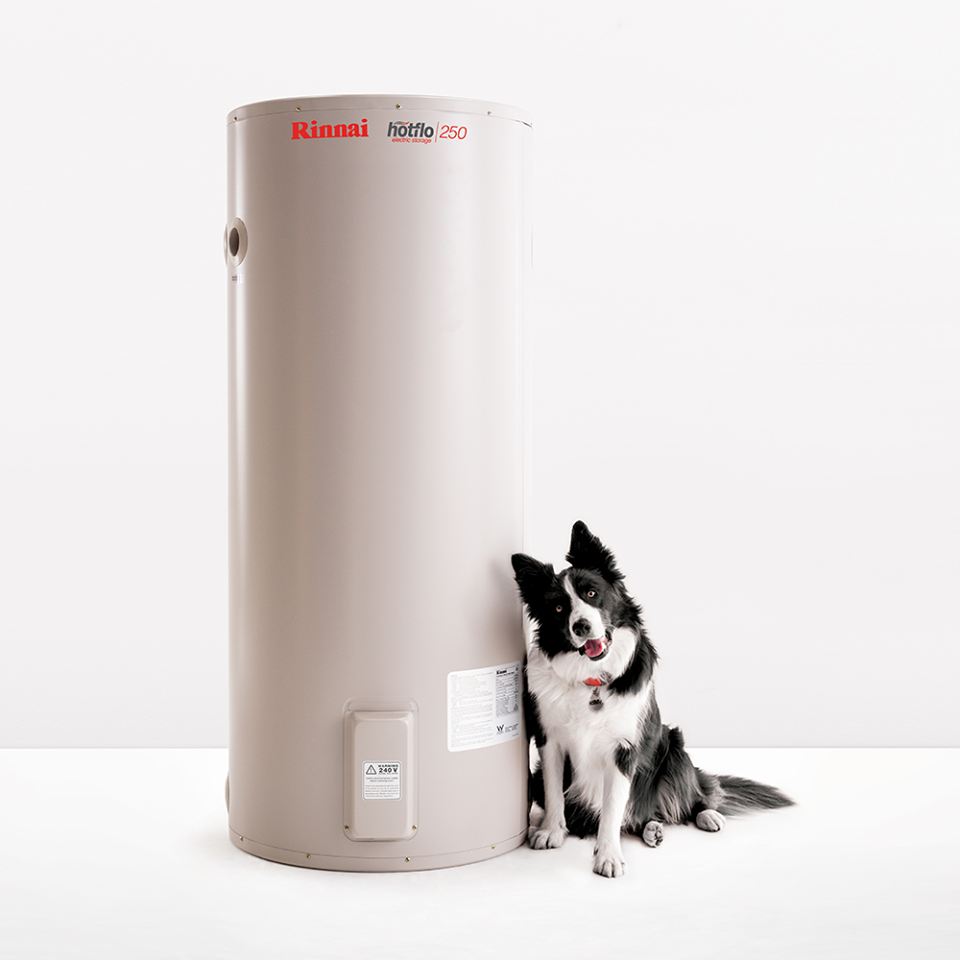 Rinnai Electric Water Heater